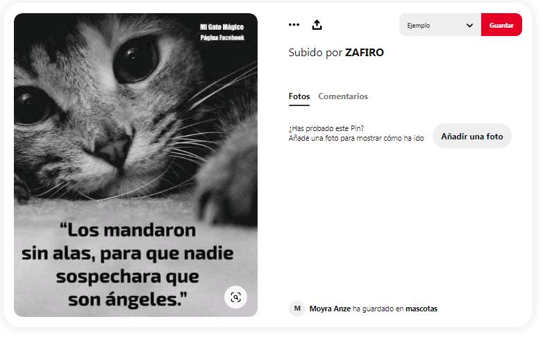 Cita de animales
